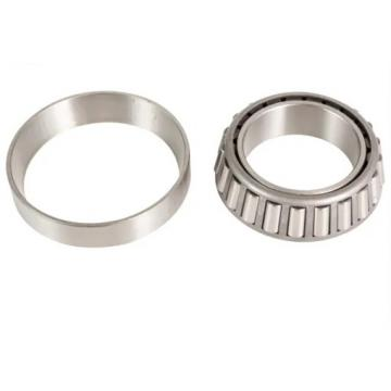 17 mm x 40 mm x 12 mm  SKF N 203 ECP  Cylindrical Roller Bearings